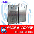 Customized air cool ozone generator for commercial gourmet street kitchen air duct cleaning