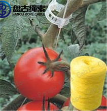 Agriculture banana packing tomato polypropylene pp raffia string