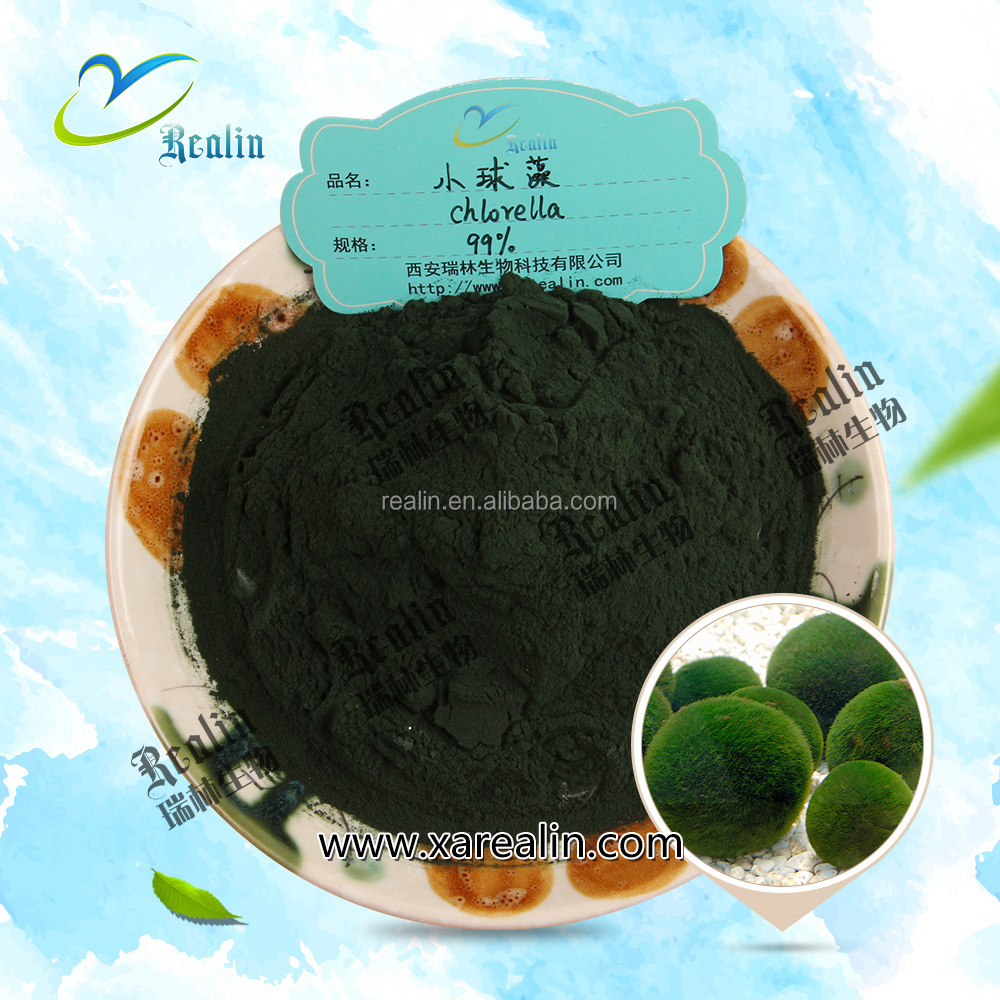 Chlorella vulgaris Powder in Bulk
