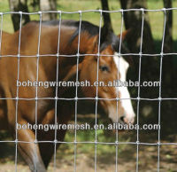 ELECTRIC FENCE FOR ANIMAL