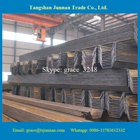 steel sheet pile support engineering