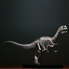 FD1275 Dinosaur Skeleton Cast