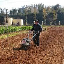 China cheap cultivation rotavator mini tractor farming machinery power hoe