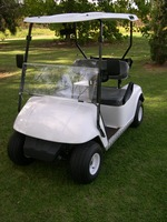 China factory price wholesale 2 seat 250CC gas powered golf cart