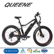 QUEENE/26 inch electric mountain bike with fat tire 48v 1000w motorized bicycle with hidden battery 2018