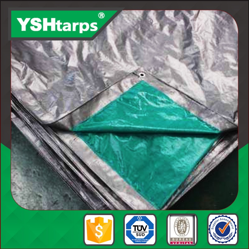 Woven Fabric Plastic Sheet And Ldpe Laminated tarpaulin