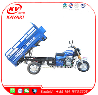 Chinese manufacturer strong power cargo tricycle 3 wheel motorcycle