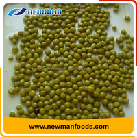 New arrival delicious healthy brine sweet food specification canned green bean