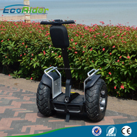 Two wheel off-road motorcycle/self-balancing scooter from Alibaba golden supplier