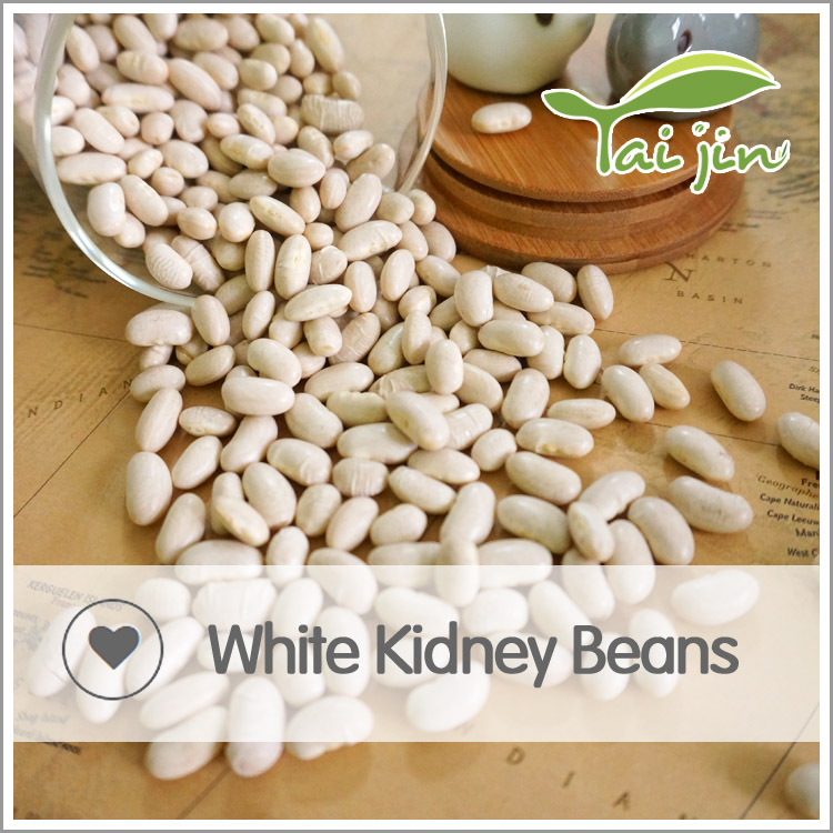 China Origin Good Quality White Kidney Beans