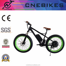 CNEBIKES/OEM hot sale 48V 1000w electric mountain bicycle,snow electric bike, sport ebike