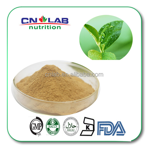 Natural Green Tea Extract With Polyphenols,Catechins,EGCG Powder in Bulk Supply