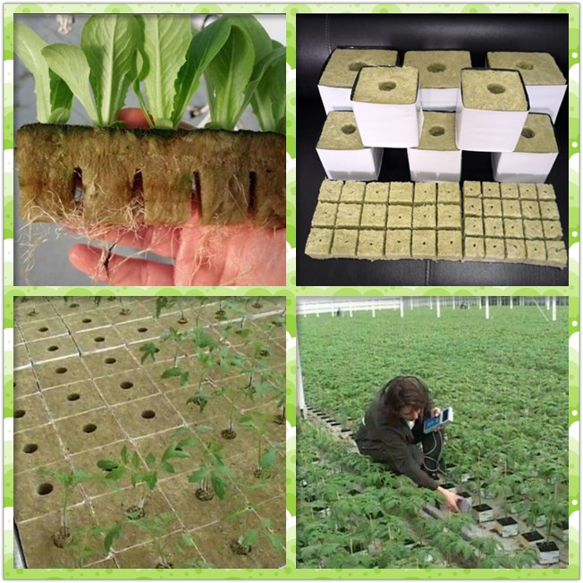 Hydroponics agricultural mineral rock wool for Tomatoes seeds and Lettuce planting
