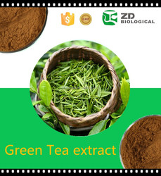 Natural Slim Green Tea powder EGCG