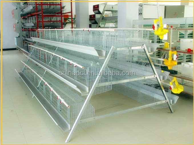 H type layer chicken cage poultry equipment