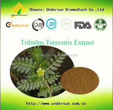100% Natural Plant Extract Tribulus Terrestris Saponins 20-98%