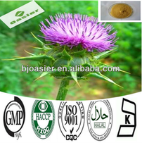 Factory Supply Milk Thistle Silybum Marianum Extract With 85% Silymarin