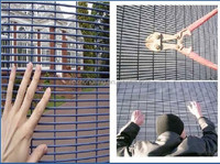 4x4 welded wire mesh fence/welded wire mesh fence panels in 6 gauge( manufacturel best price and good quality)