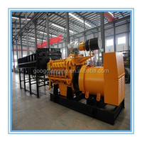 Googol Gas Engine Genset