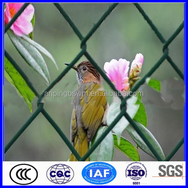 Hot sale high quality Green chain link fence