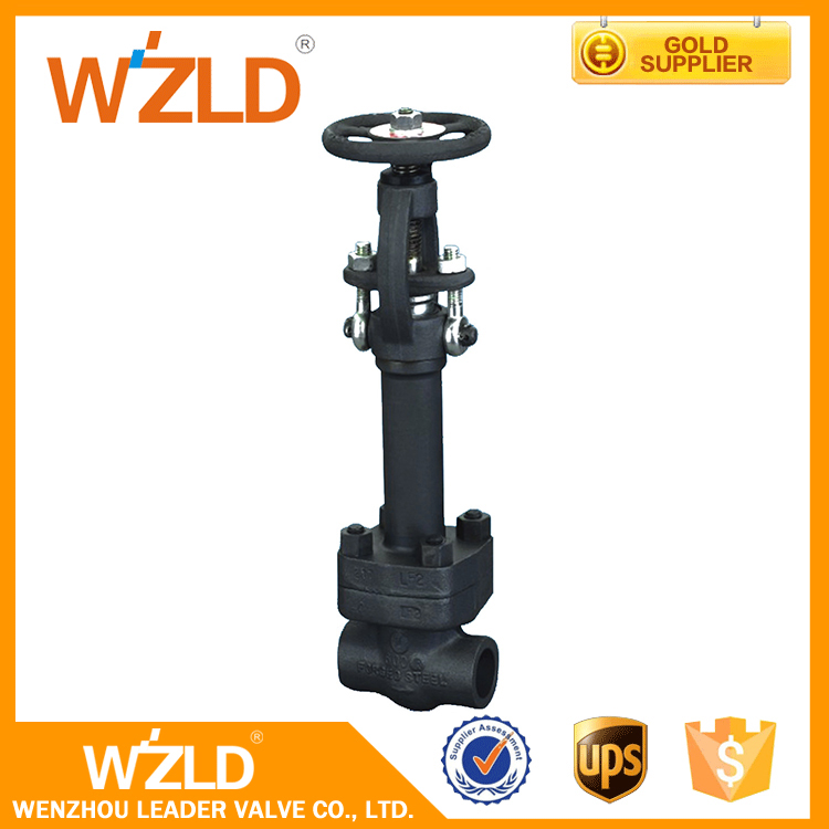 WZLD Pn16 F304 LF2 LF3 Material 3/8 Inch High Pressure Forged Cryogenic Globe Valve