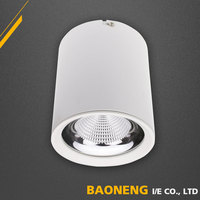 IP20 White Housing Color Surface Mounted 15W LED Downlight