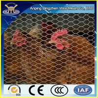 Cheap Galvanized and PVC coated Steel Wire Mesh for Chicken Coop/Chicken wire roll
