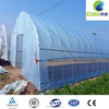 Low Cost Commercial Greenhouse For Tomato