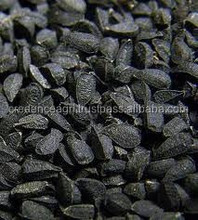 Wholesale Price Good Quality Nigella Sativa Seed Extract for Sale
