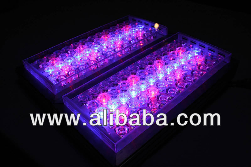 IT LED GROW 2X18 36Watt, 800 PAR Multi-Spectrum / Custom Spectrum