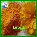 Marigold extract super lutein.lutein powder.marigold flower extract