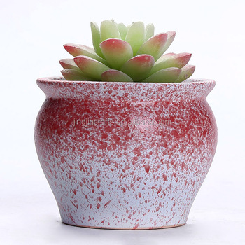 cheap rainbow mini succulent porcelain flower pot