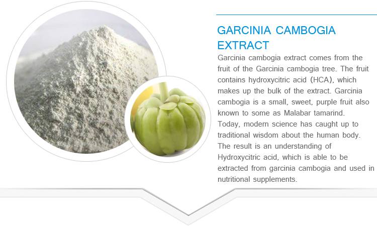 Top quality Garcinia Cambogia Extract Hydroxy Citric acid