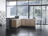 Solid carcase/mdf wood new modular kitchen cabinet color combinations for sale