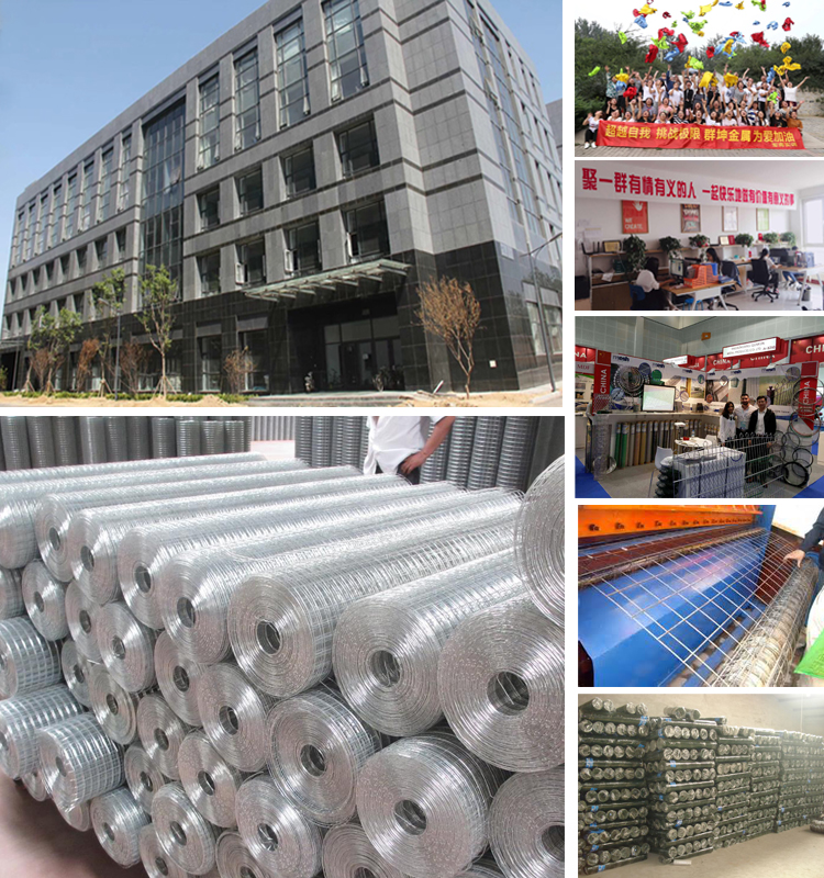 precise construction everlasting reliable pvc coated/galvanized/stainless steel welded wire mesh manufacturer