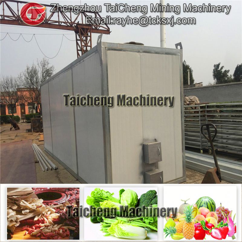 21t/h fruit and vegatable drying machine Cif price