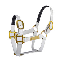 Horse Harness PVC Horse Micklem Halter for Equestrian