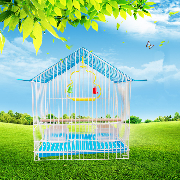 Several Colors New Iron Bird Cages Elegant Cages for Birds
