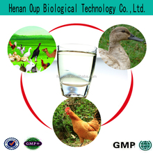 pigeon product Dog vitamin poultry antiviral drugs Henan oup Powder,Capsule,Tablet animals production