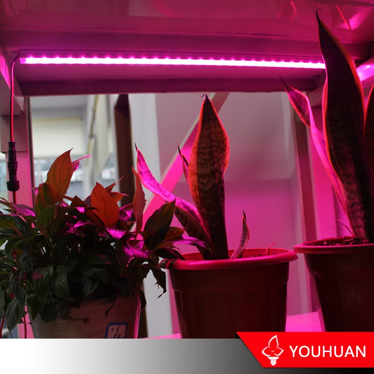 Zhejiang Manufacturer Aluminum Alloy led Full Spectrum Grow Light
