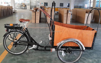 three wheel electric transport in special transportation