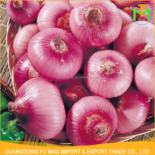 Shandong Good Quality New Crop All The Year Round Supply Wholesale Price Fresh Red Onion