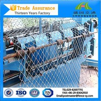 Low Price PVC Green Discount Chain Link Fence