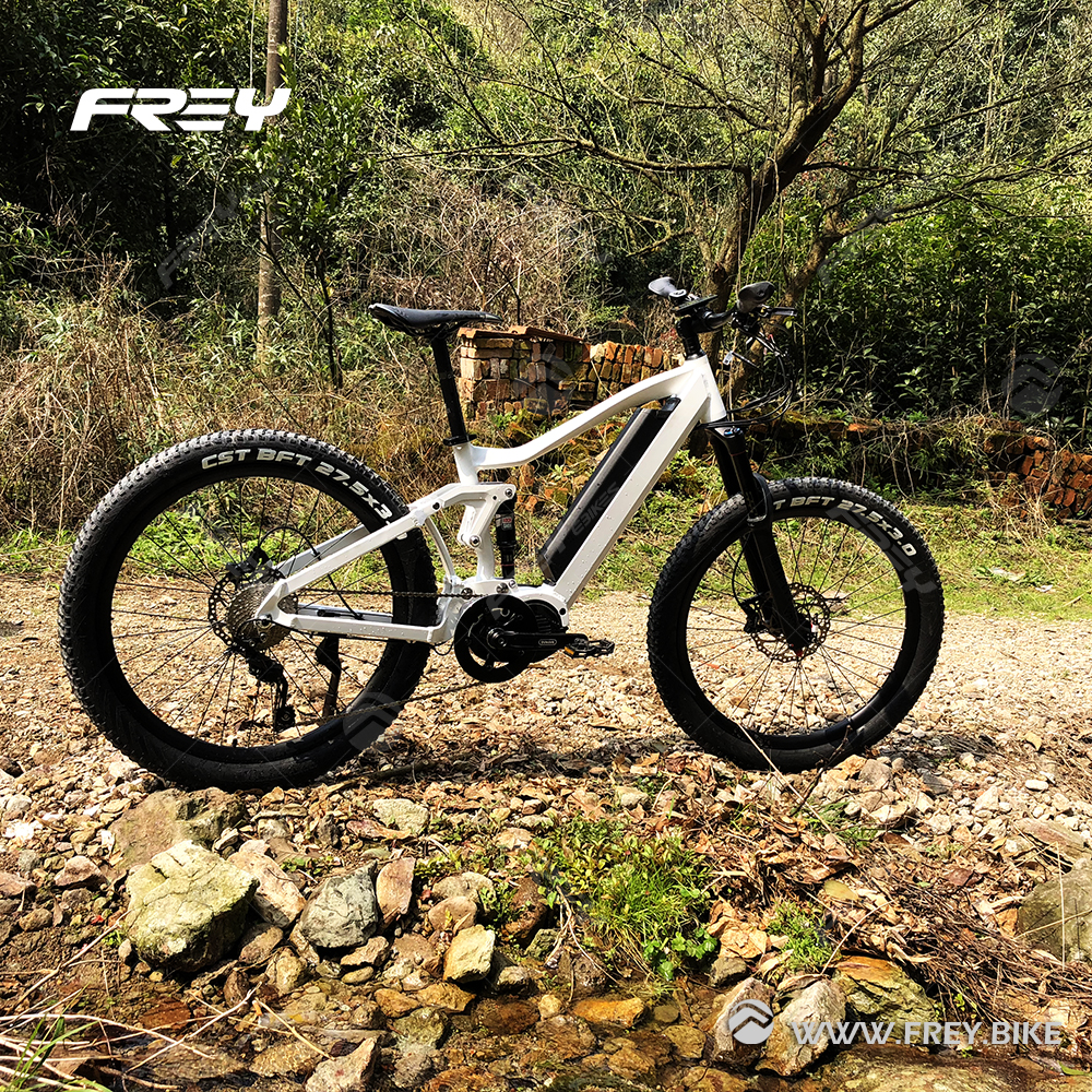 48V1000W Mtb electric Bike Bafang mid drive