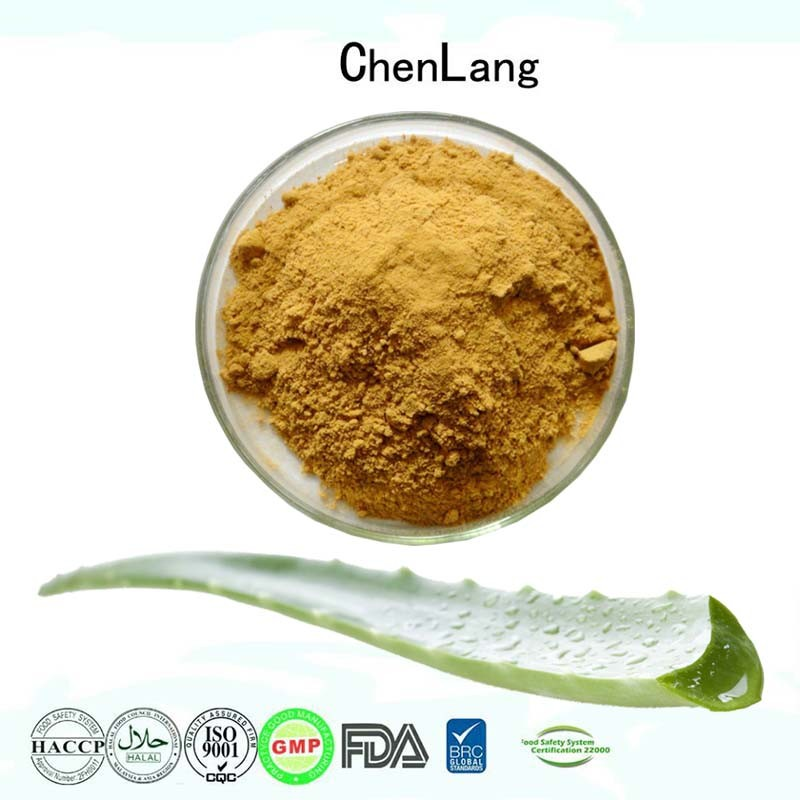 Cosmetic Grade With High Quality Pure Natural Aloe Vera Extract Powder