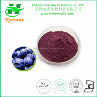 Anthocyanidins Powder European Bilberry Extract, Chinese Bilberry Extract