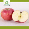 packing carton for fresh apple china red mature fuji apple supplier chinese fresh red fuji apples