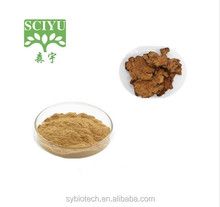 High quality Pure Natural Dahurian Angelica Root extract ligustilide