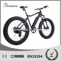 Mountain 250W Ebikes Models Sport Power Road E Bike Chinese Electric Bicycles Speed Bikes for Sale Chinese Power Bikes