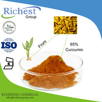 Factory Offer Curcumin 95% Extract Powder